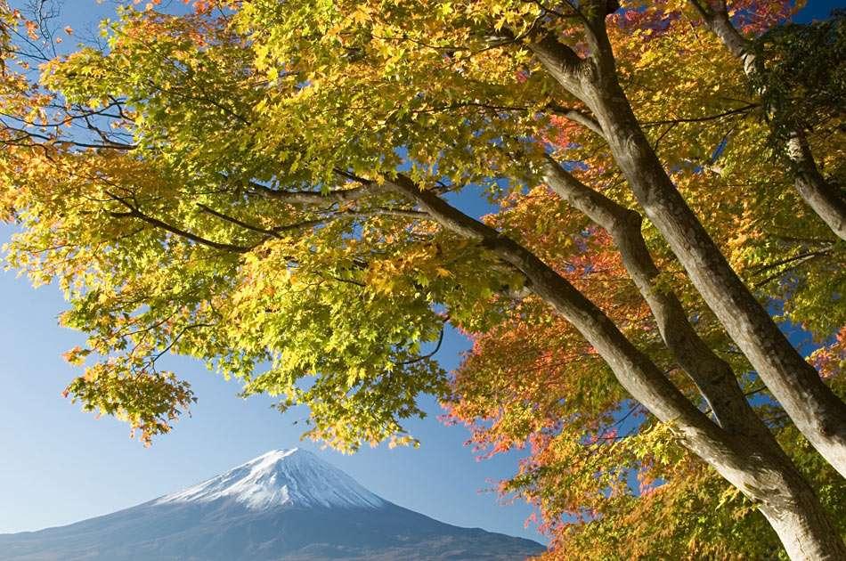 Góra Fuji - Fuji-san (zwana także Fuji-yama) jest wulkanem o średnicy krateru 600m i najwyższą górą Japonii (3776 m n.p.m.). Leży na wyspie Honsiu, na południowy zachód od Tokio (10×6)
