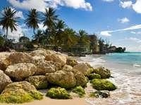 Plaża Dover na Barbadosie