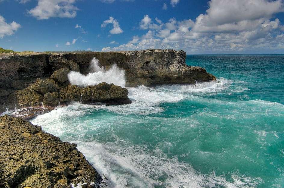 Klify North Point - Barbados - Widok z North Point na klify na północnym wybrzeżu Barbadosu. W tej części wyspy nie ma zbyt wielu łatwo dostępnych plaż, za to jest ona ceniona za spokój i piękne widoki (8×6)
