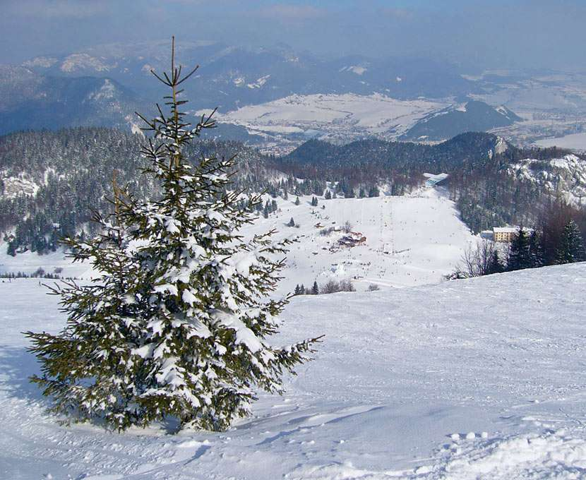 Zimowy widok ze stoku