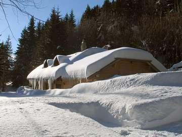Chata w Alpach
