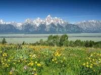 Park Narodowy Grand Teton (USA)