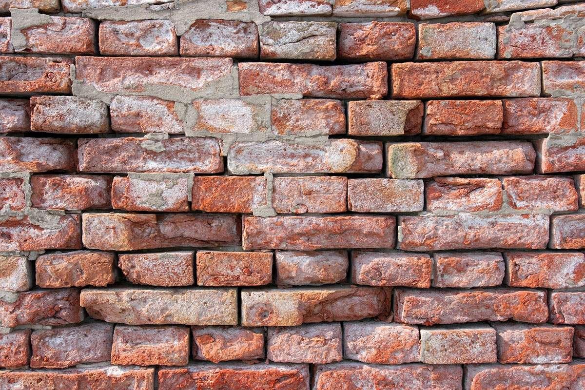 Ściana z cegieł - Cegły są jednym z najpopularniejszych materiałów budowlanych. Stosowane są już od kilku tysięcy lat, natomiast cegły wypalane z gliny pojawiły się około czwartego wieku przed naszą erą. P (8×10)