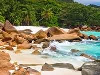 Plaża na wyspie Praslin (Seszele)