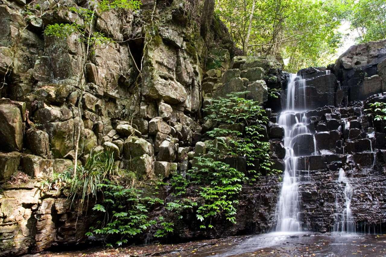 Wodospad w Parku Barrington Tops (Australia) - Wodospad w Parku Narodowym Barrington Tops (Barrington Tops National Park). Park położony jest około 200 kilometrów na północ od Sydney (12×8)