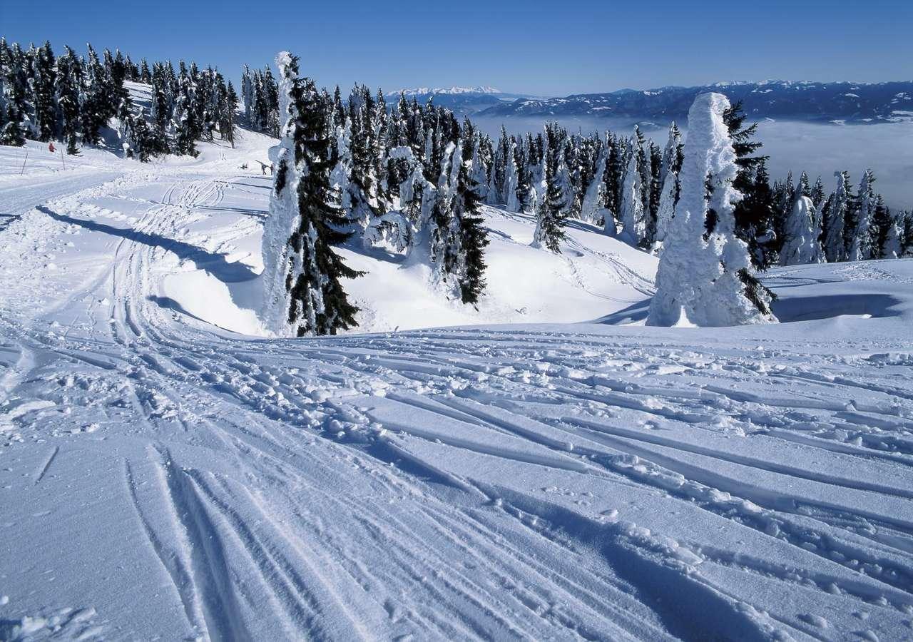 Martinské hole (Słowacja) - Martinské hole to popularny ośrodek narciarski położony na zboczach pasma górskiego Mała Fatra, w pobliżu miejscowości Martin. Malownicze trasy narciarskie o umiarkowanym stopniu trudności, o (12×6)