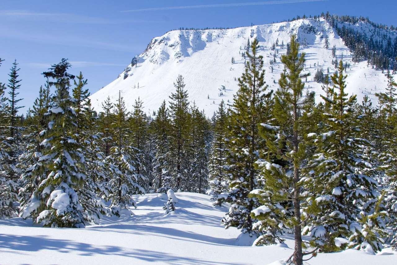 Góry Kaskadowe (USA) - Zimowa sceneria Gór Kaskadowych w amerykańskim stanie Oregon. Góry Kaskadowe to pasmo górskie Ameryki Północnej położone na zachód od Kordylierów. Rozciągają się od Kolumbii Brytyjskiej w (9×6)