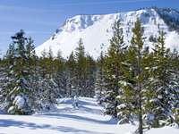 Góry Kaskadowe (USA)