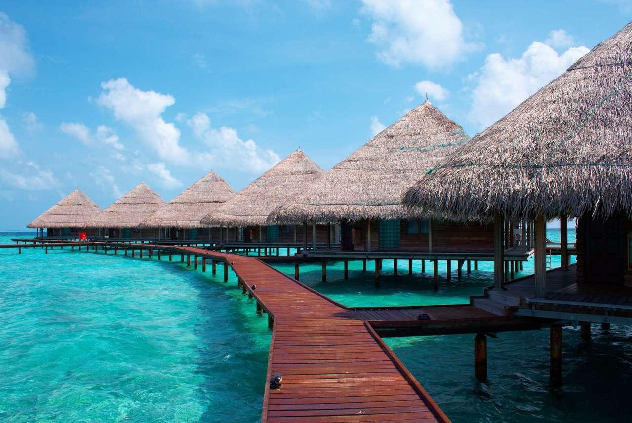 Chatki na wodzie (Malediwy) - Malediwy to państwo wyspiarskie położone na archipelagu o tej samej nazwie. Leżą na Oceanie Indyjskim, 500 kilometrów od Indii. Malediwy, ze średnią roczną temperaturą 30 stopni Celsjusza, n (8×5)