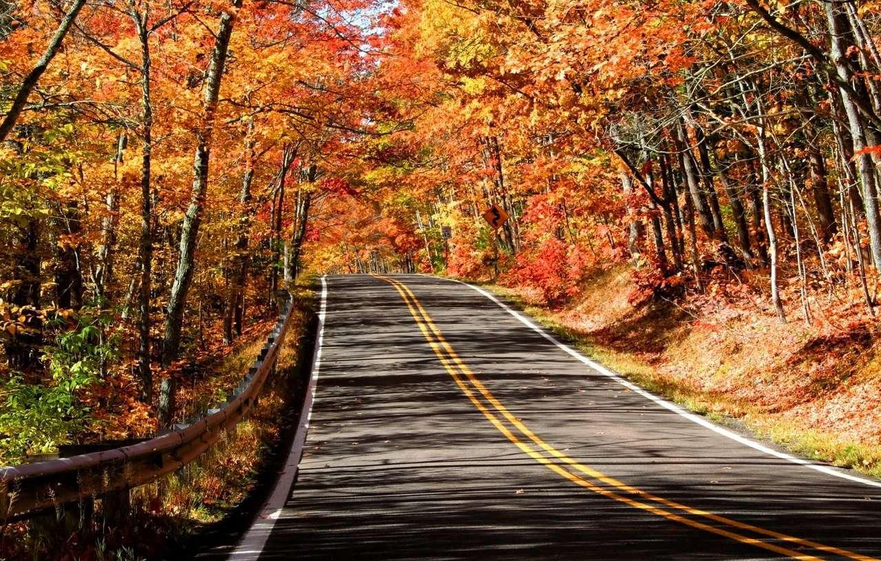 Jesień w stanie Michigan (USA) - Stan Michigan leży w północno-wschodniej części USA, na dwóch półwyspach. Na terenie stanu znajduje się część czterech spośród pięciu Wielkich Jezior Amerykańskich - Michigan (od któr (11×6)
