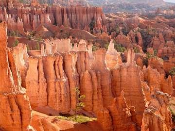 Park Narodowy Bryce Canyon (USA)