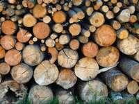 Stos drewna