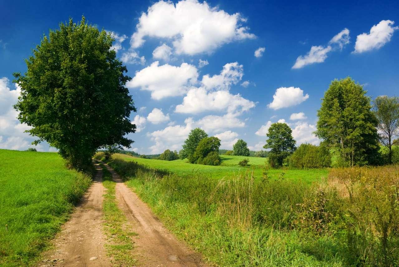 Polna droga - Mazurska, polna droga wśród, charakterystycznych dla tego regionu, pagórków. Mazury, zwane krainą tysiąca jezior, słyną z pięknych widoków (11×7)