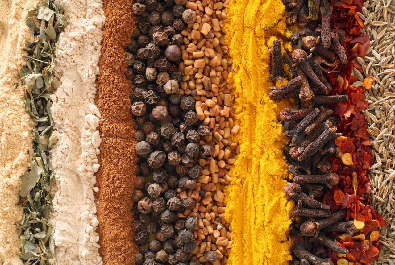 Przyprawy - Wybór przypraw - imbir, liście kozieradki, czosnek, cynamon, czarny pieprz, ziarna kozieradki, kurkuma, goździki, chili i kminek (16×9)