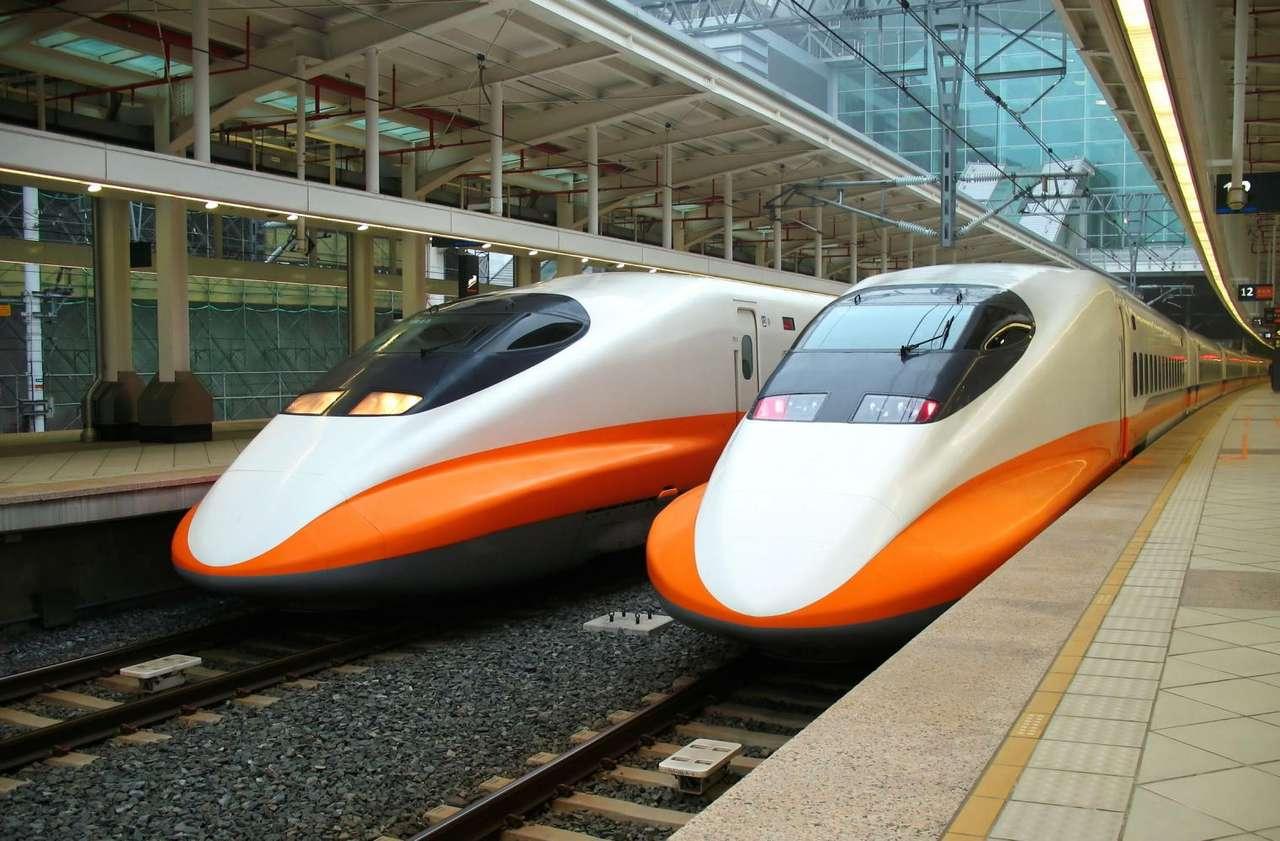 Pociągi Shinkansen 700T (Tajwan) - Dwa pociągi Shinkansen 700T na tajwańskim dworcu kolejowym. Pierwszy odcinek kolei wysokich prędkości, biegnący wzdłuż zachodniego wybrzeża wyspy, oddano do użytu w styczniu 2007 roku. Specja (13×9)