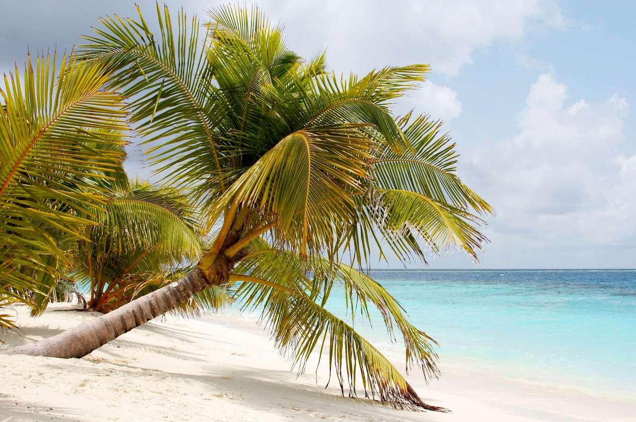 Plaża (Malediwy)