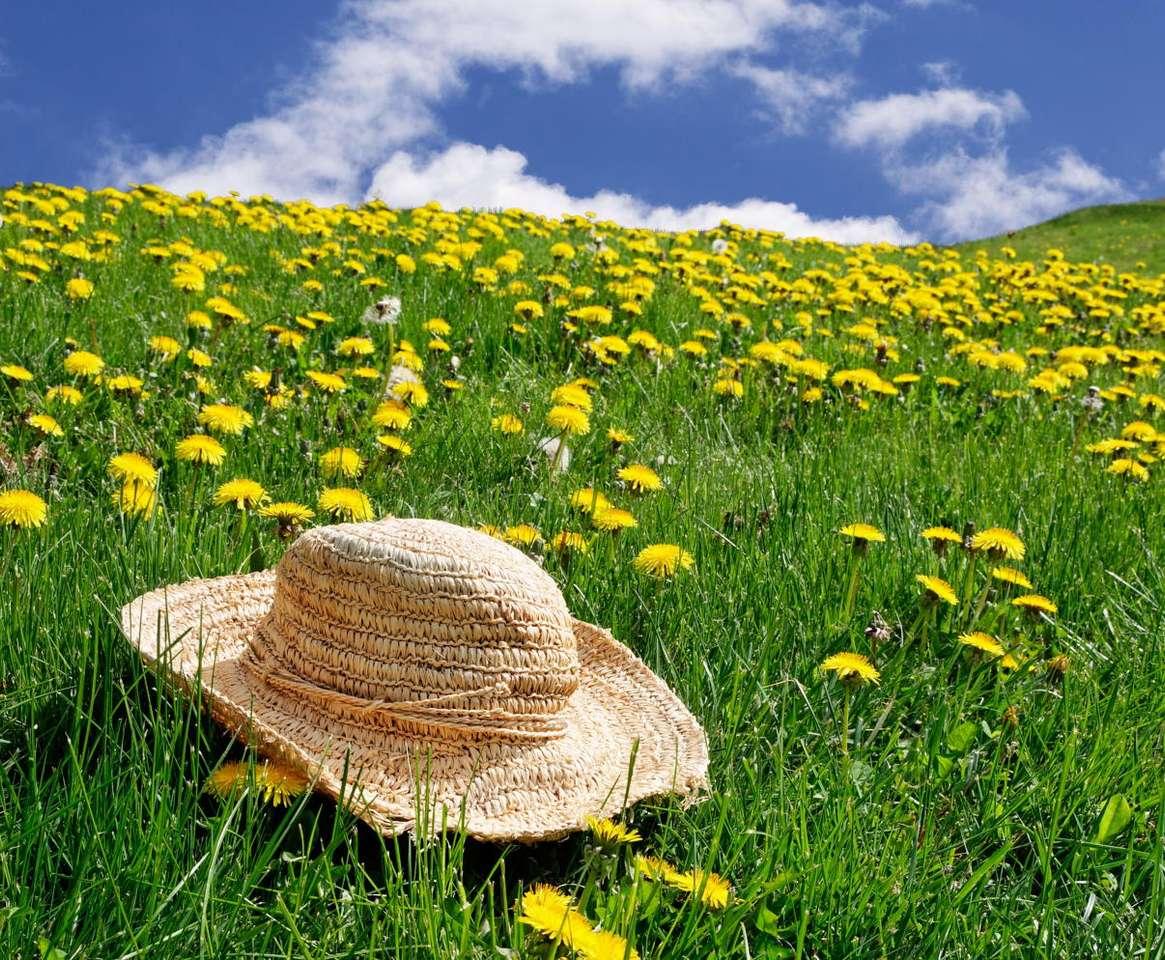 Ukwiecona łąka - Łąka pełna kwiatów mniszka lekarskiego. Mniszek lekarski, potocznie zwany mleczem, jest rośliną wieloletnią, w Polsce występującą pospolicie. Ma właściwości lecznicze i jest ceniony przez (9×7)