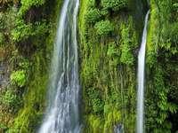 Salmon Creek Falls (USA)