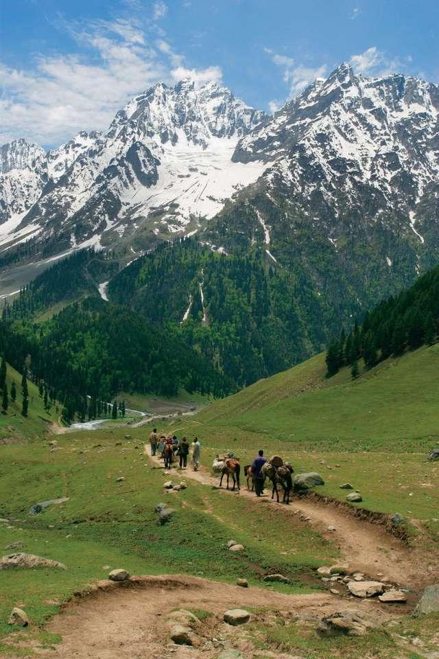 Ścieżka ku Himalajom w Kaszmirze - Kaszmir to region w Azji, w pobliżu granic Indii, Pakistanu i Chin. Obecnie, od 1948 roku, Kaszmir podzielony jest między Indie i Pakistan, chociaż Indie nigdy nie uznały tego podziału, a Pakista (6×9)
