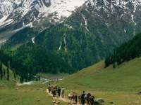 Ścieżka ku Himalajom w Kaszmirze