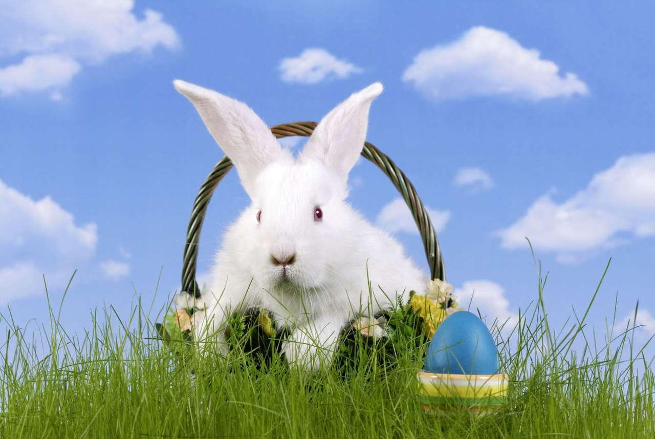 Zając wielkanocny - Zajączek to jeden ze świeckich symboli Wielkanocy. W noc poprzedzającą pierwszy dzień świąt przynosi grzecznym dzieciom pełne koszyki słodyczy i prezentów. Jest on więc nieco podobny do Św (9×5)