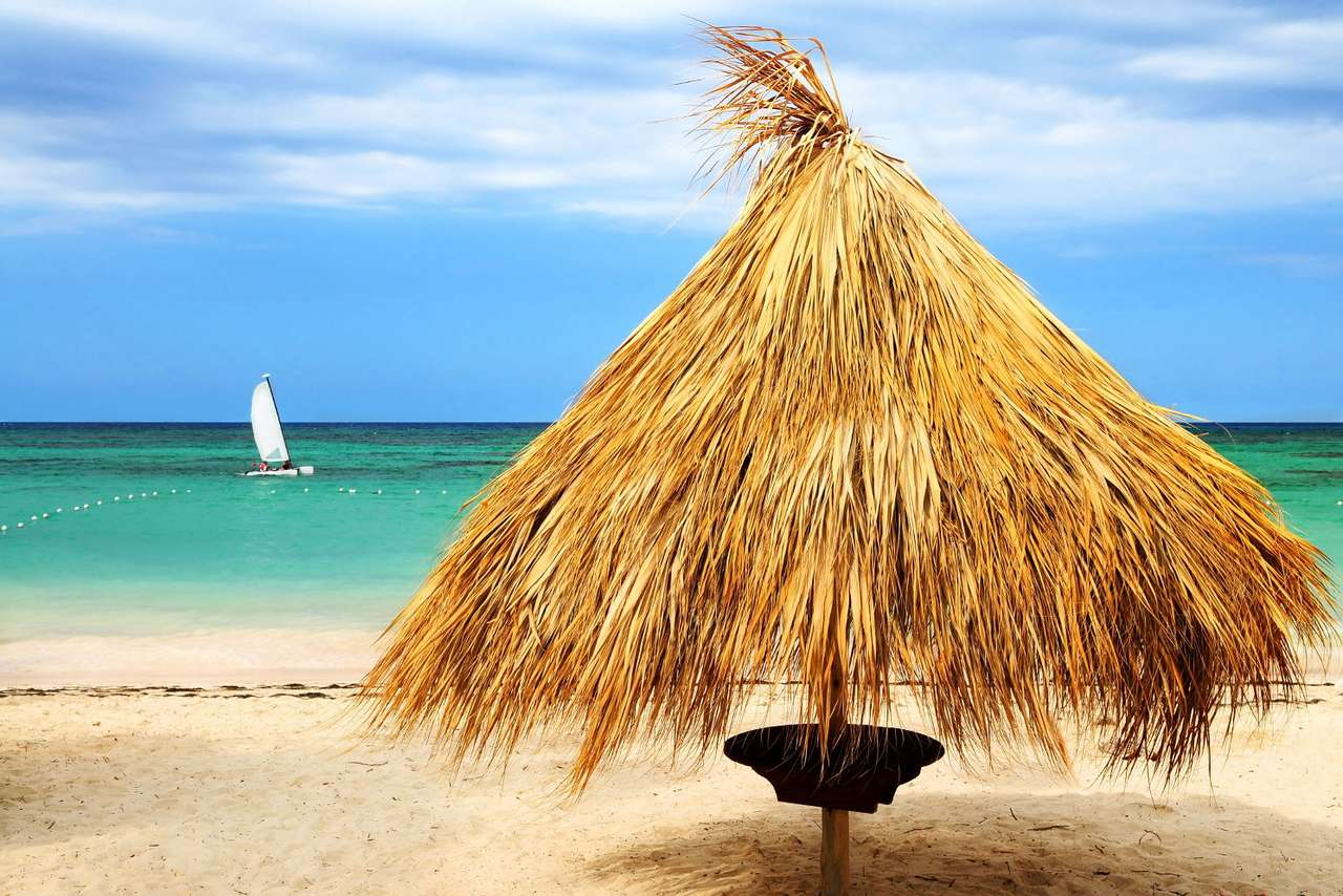 Parasol palmowy - Parasol z liści palmy na tropikalnej, karaibskiej plaży. Wymarzone miejsce do spokojnego urlopu (10×7)