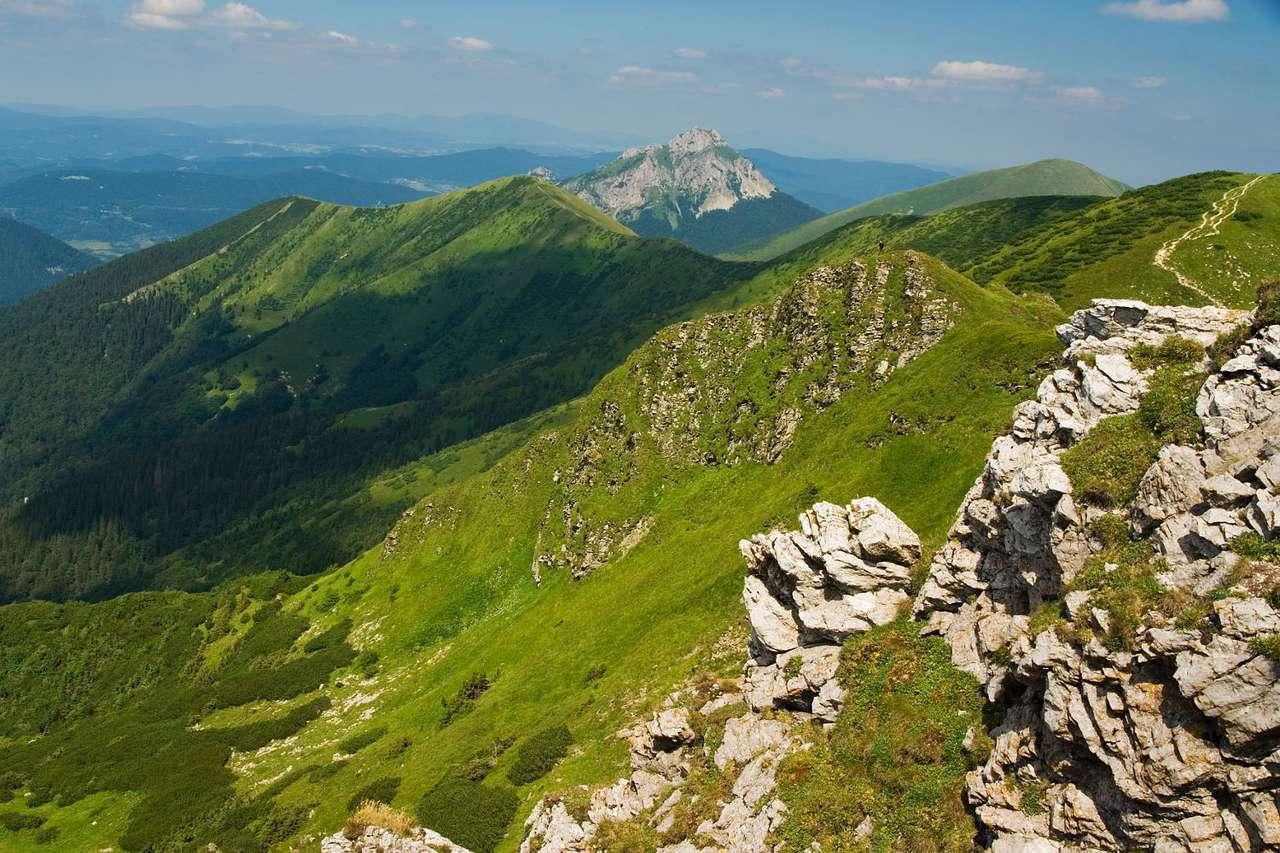 Górski krajobraz (Słowacja) - Piękny, dziki krajobraz słowackich gór (12×8)