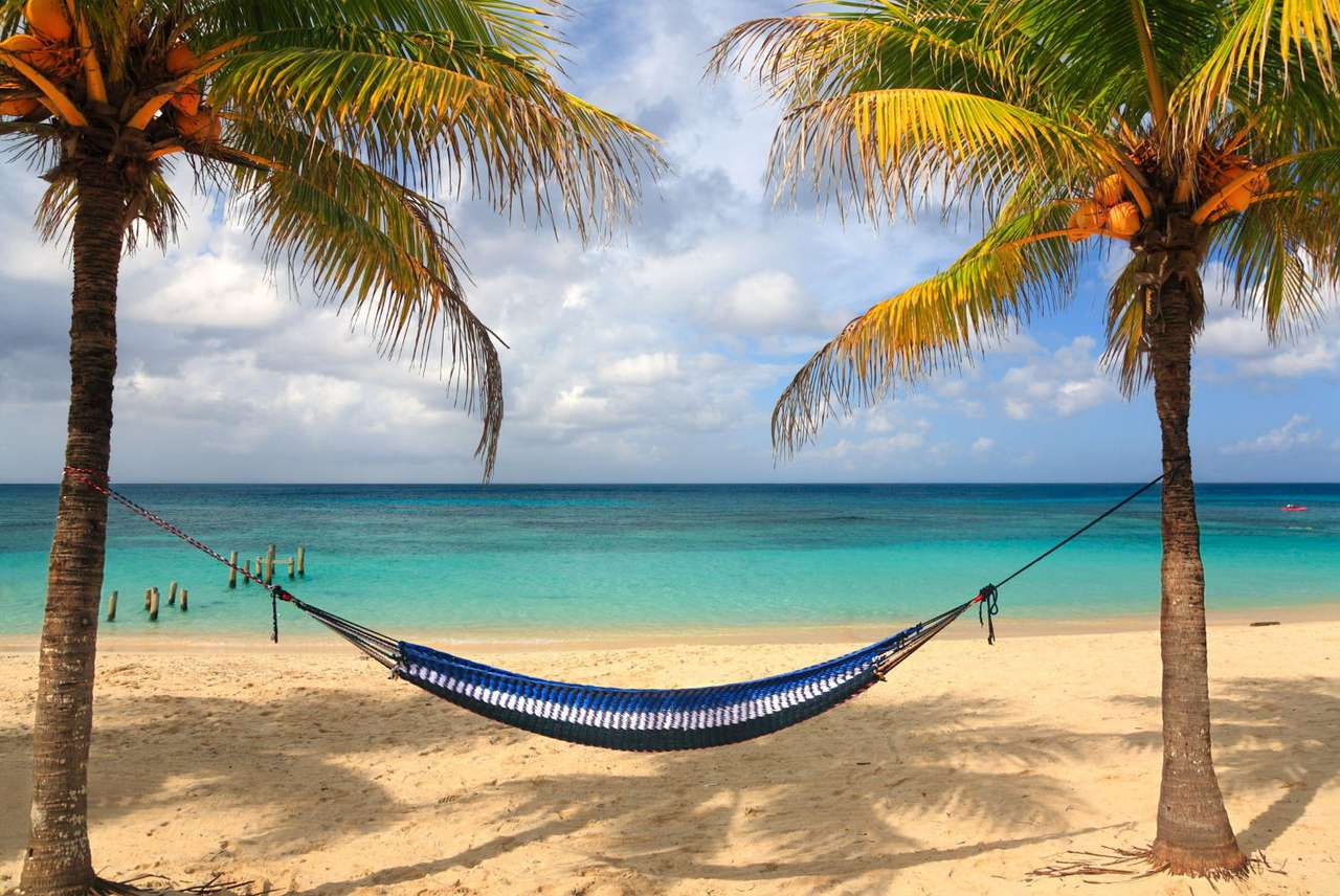 Plaża na wyspie Roatan (Honduras) - Hamak przygotowany do wypoczynku na malowniczej plaży wyspy Roatán. Wyspa, znana także jako Ruatan, leży w pobliżu największej rafy koralowej na Morzu Karaibskim. Roatán to największa wyspa ar (13×8)