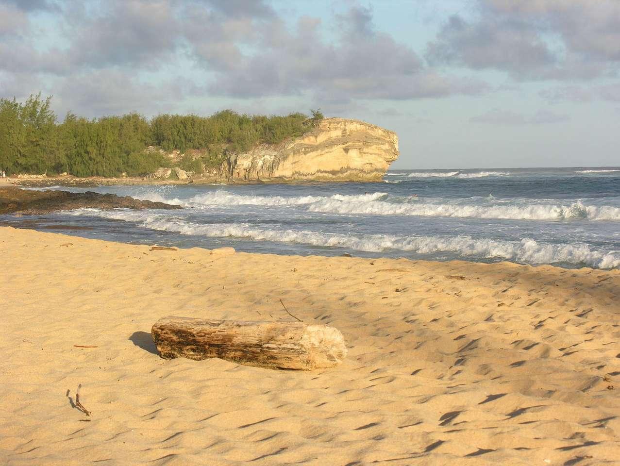 Plaża na Kauai (USA) - Kauai to wsypa wulkaniczna na Oceanie Spokojnym, należąca do Hawajów. Na krajobraz wyspy składają się strome klify, piaszczyste plaże, wysokie góry i głębokie doliny oraz liczne wodospady. N (7×5)
