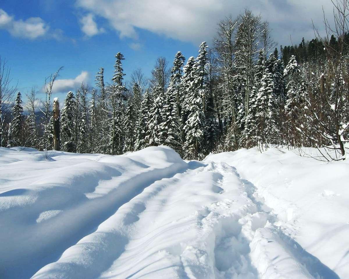 Zima na Kaukazie - Spokój, cisza, śnieg - środek zimy na Kaukazie. Kaukaz to region leżący na pograniczu Europy i Azji, wokół gór o tej samej nazwie (9×7)