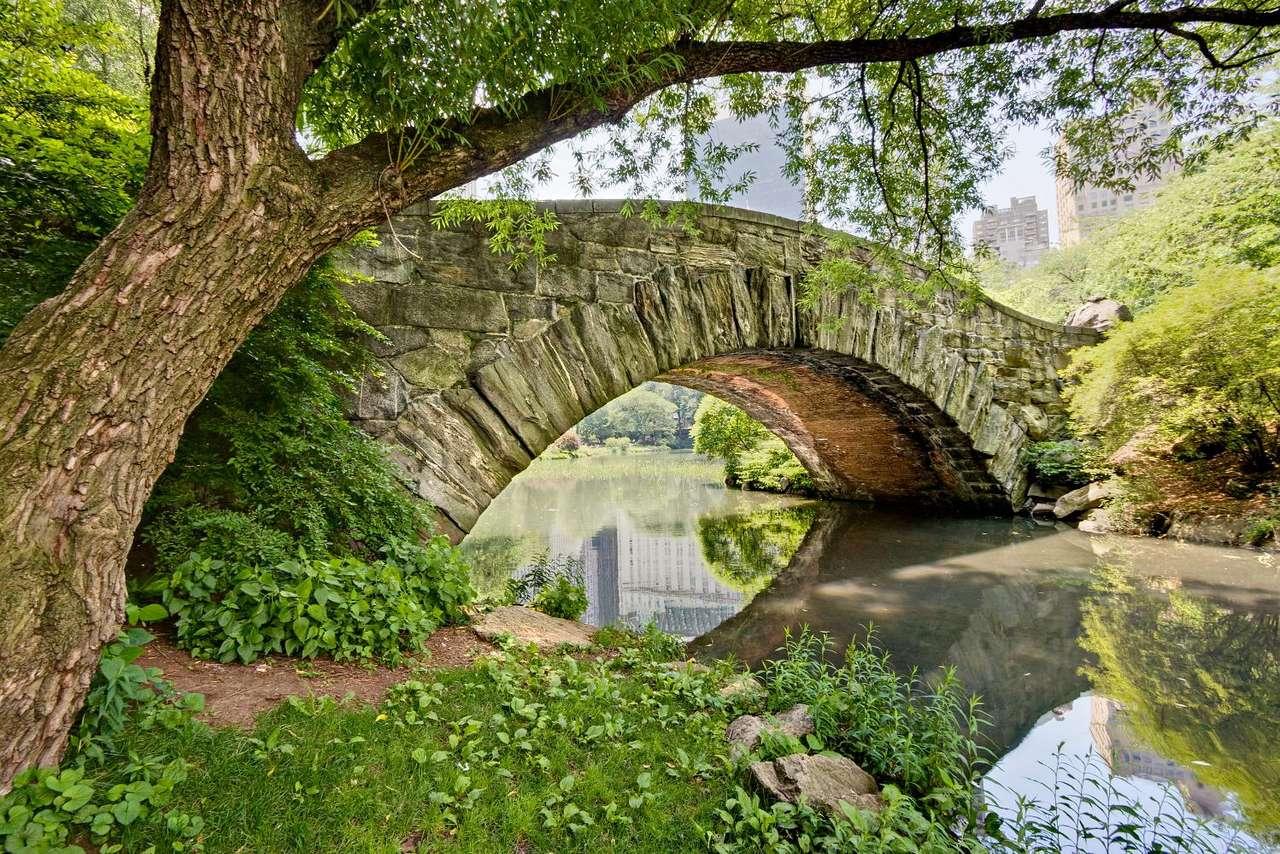 Gapstow Bridge (USA) - Gapstow Bridge to kamienny most, który jest ikoną Central Parku. Kamienna budowla zastąpiła w 1896 roku drewniany most, który stał w tym miejscu wcześniej. Central Park znajduje się w centrum (14×9)