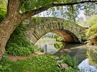 Gapstow Bridge (USA)