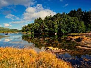 Zatoka Glengarriff (Irlandia)