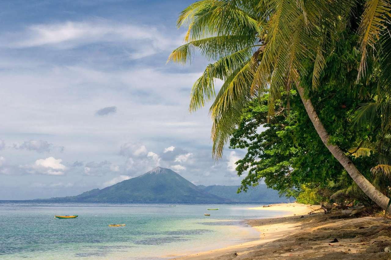 Tropikalna plaża (Indonezja) - Plaża na jednej z należących do Indonezji Wysp Banda. Te niewielkie wysepki należą do archipelagu Moluków. Wyspy Banda stały się znane dzięki gałce muszkatołowej, która była kiedyś bardz (8×5)