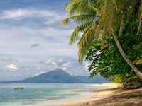 Tropikalna plaża (Indonezja)