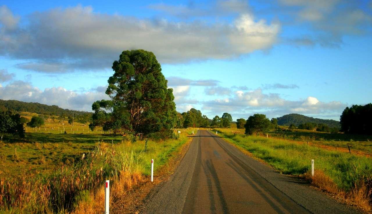 Droga w Hrabstwie Noosa (Australia)