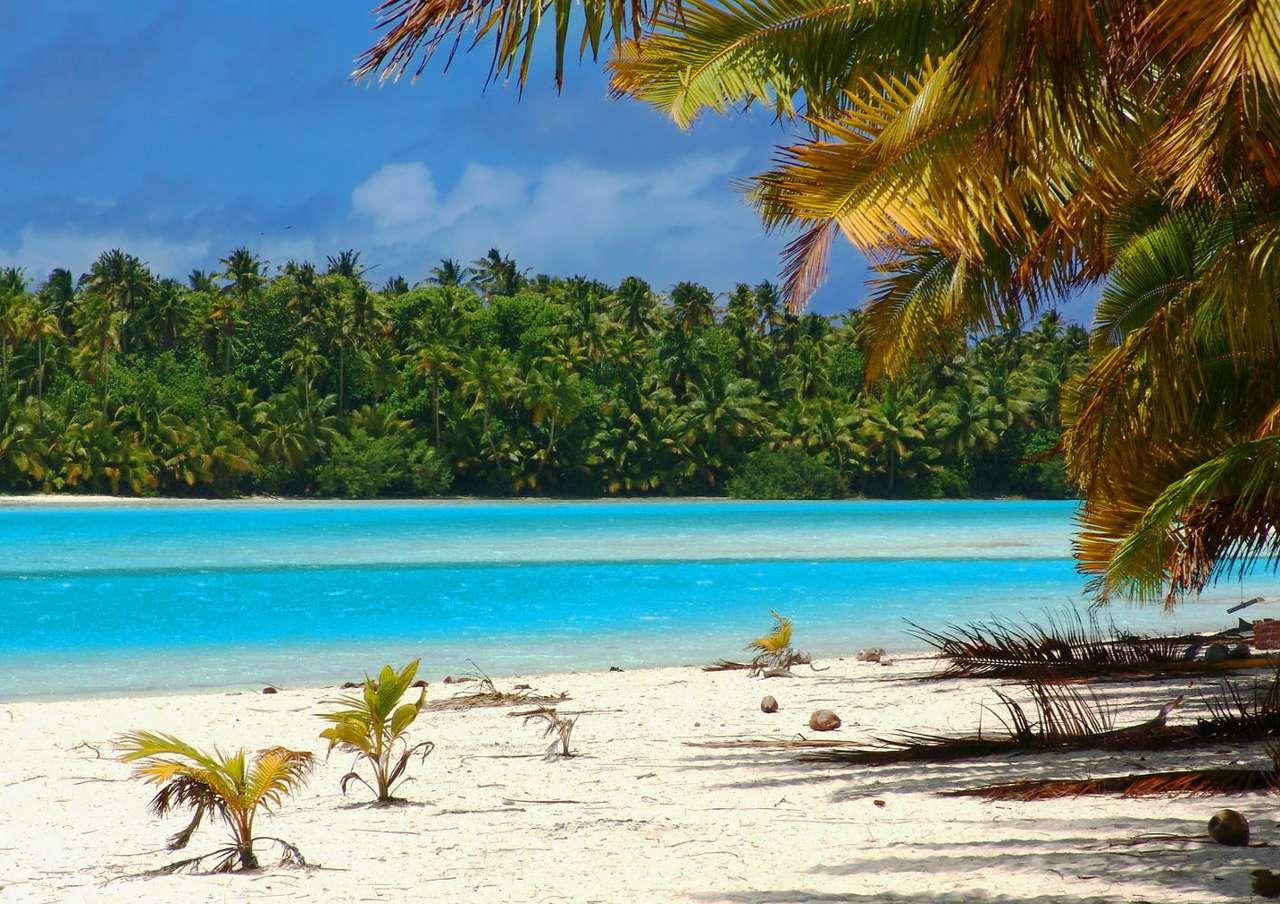 Tropikalna plaża (Wyspy Cooka)