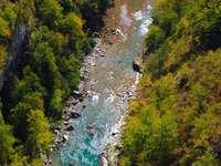 Rzeka Tara (Czarnogóra)