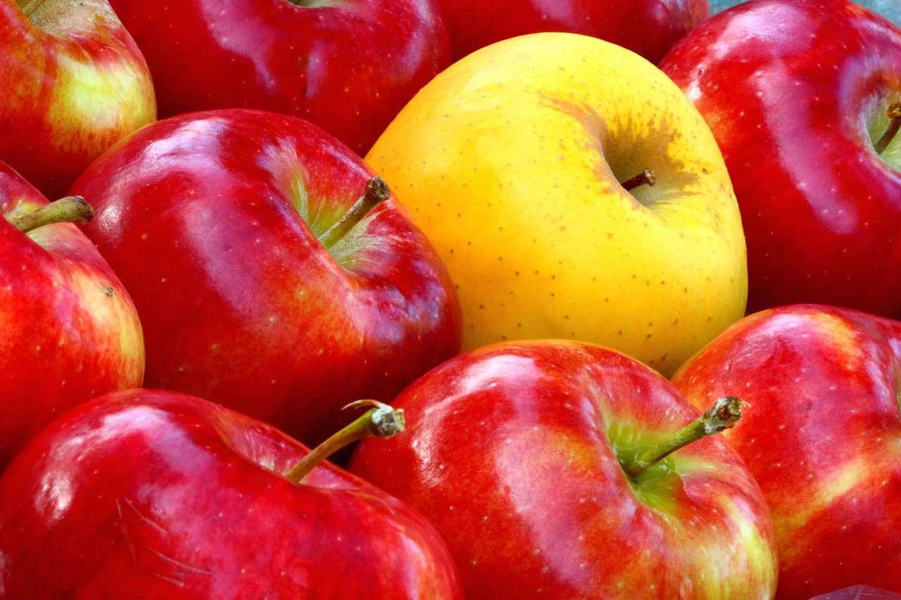 Soczyste jabłka - Jabłko to bardzo popularny owoc. Charakteryzuje się słodko-kwaśnym smakiem, zależnym od odmiany, soczystością i chrupkością. Jabłko posiada bogatą i różnorodną symbolikę w wielu kultura (12×8)