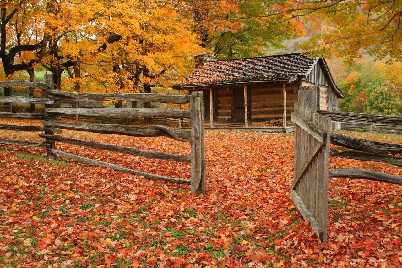 Stara chatka w jesiennym lesie - Jesień to piękna pora roku, przynajmniej gdy nie pada deszcz. To niewątpliwie świetny czas na długie spacery po lesie, który zwykle przybiera bajkowe barwy (9×6)