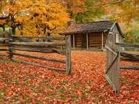 Stara chatka w jesiennym lesie