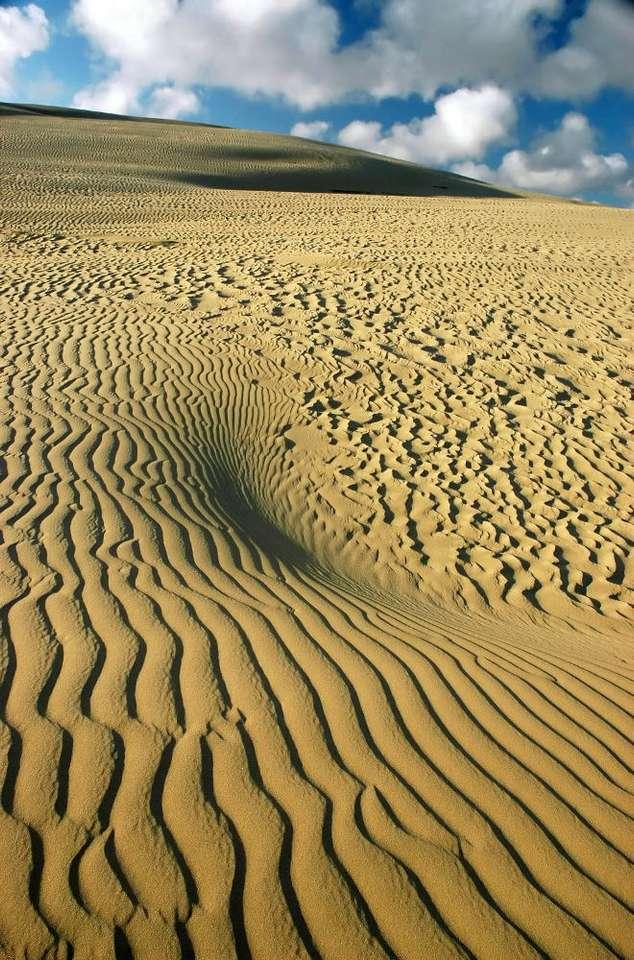 Wydma (Nowa Zelandia) - Wielkie wydmy w najdalej na północ wysuniętej części Nowej Zelandii przyciągają wielu turystów. Są popularnym miejscem wśród osób odwiedzających znaną plażę Ninety Mile Beach i całą (6×10)