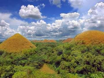 Wzgórza Czekoladowe (Filipiny)