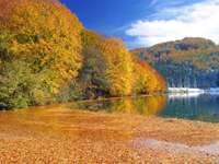Jesień w górach Bałkan (Bośnia i Hercegowina)