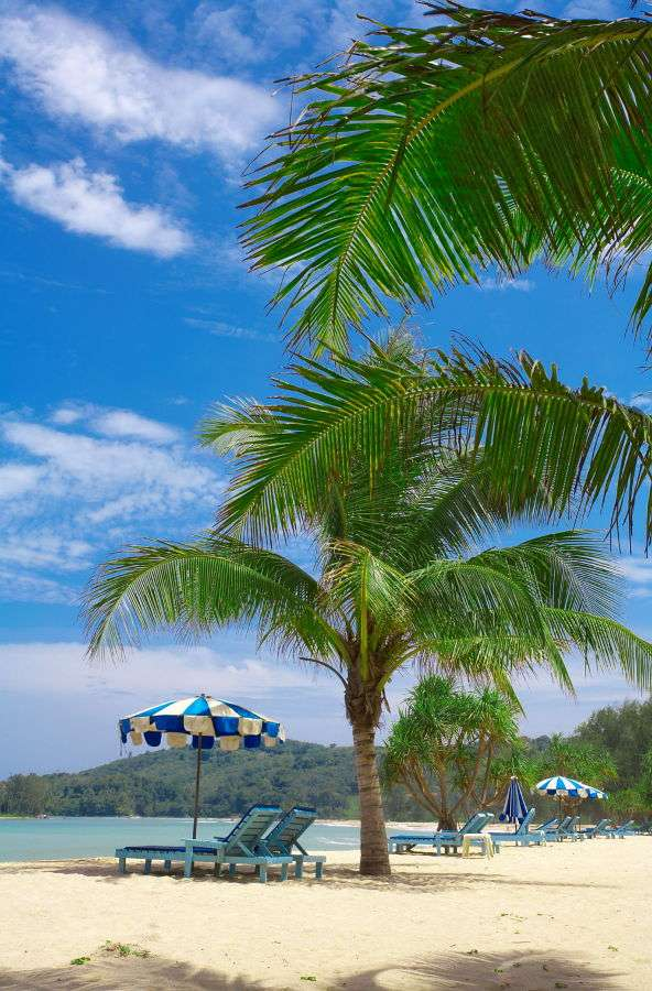 Tropikalna plaża - Plaże w krajach tropikalnych, czyli leżących w strefie międzyzwrotnikowej, charakteryzują się kilkoma elementami: jasnym i drobnym piaskiem, czystą i ciepłą wodą oraz charakterystyczną roś (8×12)