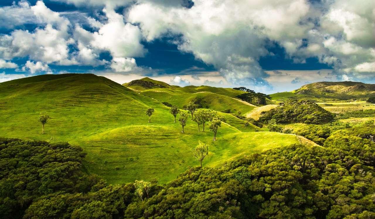 Park Narodowy Abel Tasman (Nowa Zelandia) - Park Narodowy Abel Tasman zlokalizowany jest na północy Wyspy Południowej w Nowej Zelandii, w regionie Tasman. Założony został w 1942 roku. Jest on najmniejszym parkiem narodowym w całej Nowej (12×7)