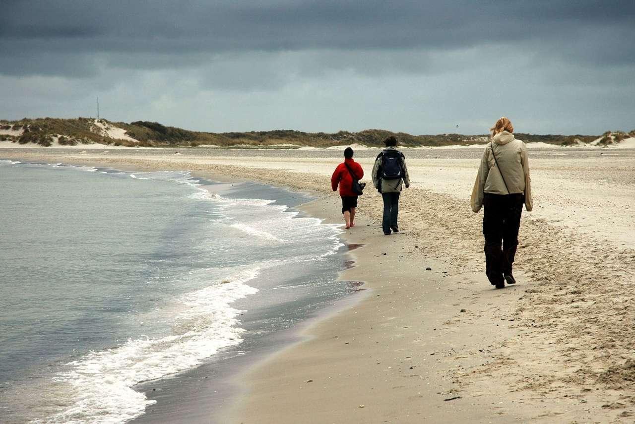 Plaża na Przylądku Północnym (Norwegia) - Znajdujący się w Norwegii Przylądek Północny, niegdyś błędnie uznawany za najdalej na północ wysunięty punkt Europy, to obszar bardzo atrakcyjny turystycznie. Jest tak nawet pomimo zwykle n (11×7)