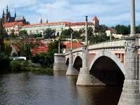 Zamek na Hradczanach w Pradze (Czechy)