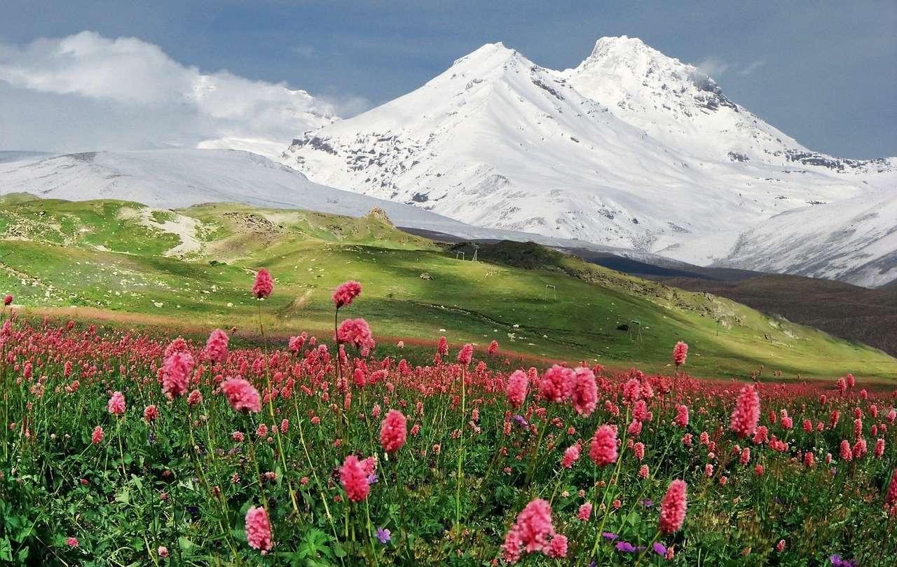Lato na Kaukazie (Armenia) - Góry Kaukaz piękne są nie tylko w miesiącach zimowych, ale także w porach cieplejszych. W okresie letnim na najwyższych szczytach wciąż zalega śnieg, jednak niższe partie gór, na których z (11×7)
