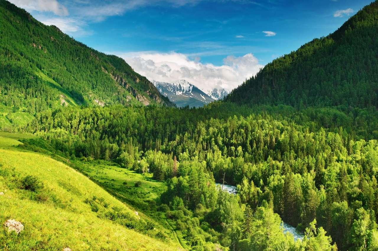 """Dolina w górach Ałtaj (Rosja) - Przepiękny łańcuch górski Ałtaj łączy aż 4 kraje: Rosję, Kazachstan, Mongolię i Chiny. W języku mongolskim nazwa Ałtaj oznacza """"Złote Góry"""". Ciągnący się przez ponad 2000 kilometrów (12×8)"""